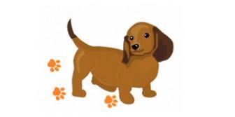 無料素材-犬のイラスト・アラカルト(犬のイラストとはがきテンプレート)