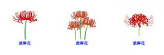 秋の花のイラスト2-花の素材-イラストポップ