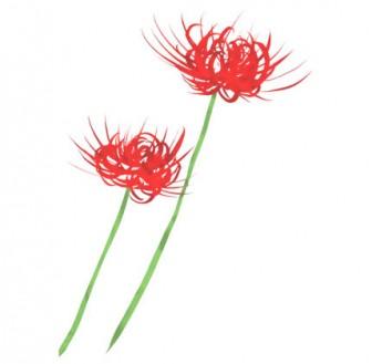 秋のお彼岸花ヒガンバナ手描き | 商用利用もできる無料イラスト素材集サイト