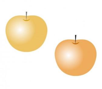 梨・果物イラスト素材 | イラスト無料・かわいいテンプレート