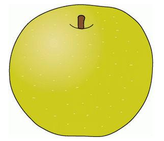 梨(ナシ)のイラスト│フリー素材の果物ネット