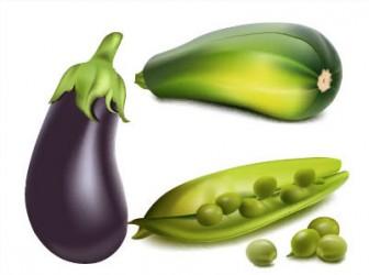 茄子,瓜,えんどう豆のイラストai/eps   ベクタークラブ<イラストレーター素材が無料>