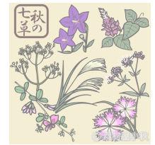 【商用利用可】秋の七草の無料イラスト・フリー素材 | 素材屋小秋