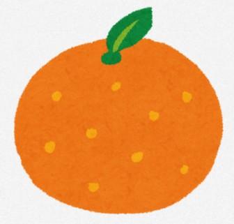 みかん・オレンジのイラスト(フルーツ): 無料イラスト かわいいフリー素材集
