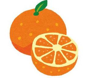 無料イラスト素材:オレンジ・みかんの画像まとめ(カット・葉っぱ・断面)