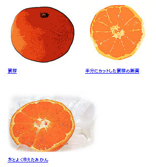 蜜柑(みかん)のイラスト素材フリー