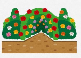 バラ園のイラスト: 無料イラスト かわいいフリー素材集