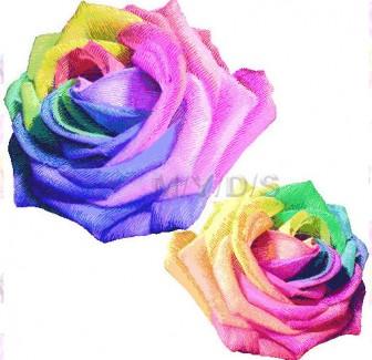 薔薇の花(レインボーローズ)のイラスト・条件付フリー素材集