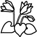 シクラメン(白黒)/冬/花・植物の無料イラスト/ミニカット・クリップアート素材