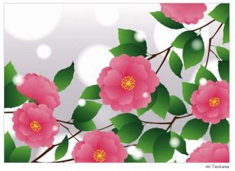 山茶花 ( さざんか ) - 素材【イラスト】 - 彩クリWEB