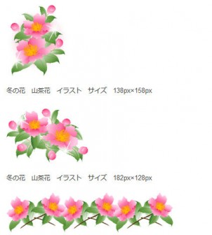 冬の花/山茶花の無料イラスト素材 - 花/素材/無料/イラスト/素材【花素材mayflower】