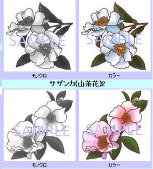 冬の花1/寒中見舞いに使える花/無料イラスト素材
