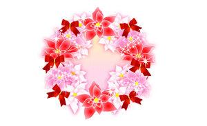 冬の花/ポインセチア/無料イラスト素材   花/素材/無料/イラスト/素材【花素材mayflower】モバイル/WEB/SNS