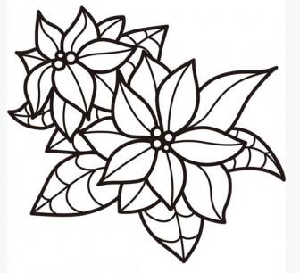 植物 ポインセチア(モノクロ)   無料イラスト・パワーポイント形式テンプレート【素材工場】