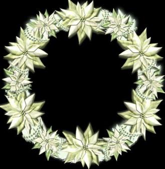 白いポインセチアのクリスマスリースのイラストをダウンロード   イラスト無料【DDBANK】