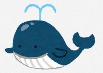鯨のイラスト   無料イラスト かわいいフリー素材集 いらすとや