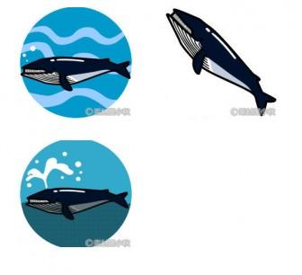 【商用利用可】鯨(クジラ)の無料イラスト・フリー素材   素材屋小秋