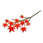 モミジの枝のイラスト素材