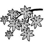 紅葉・落ち葉/秋のイラスト/無料/白黒イラスト素材