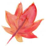 水墨画の紅葉イラスト